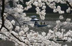 <p>People admire fully-bloomed cherry blossoms at a park in Tokyo April 6, 2009. REUTERS/Kim Kyung-Hoon</p>