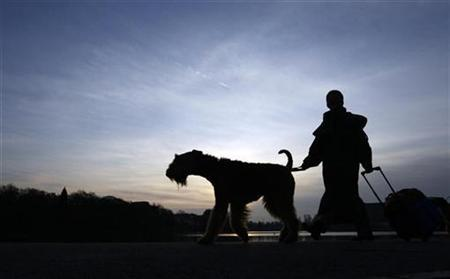 A dog and its owner arrive for the Crufts dog show in Birmingham, in this file photo from March 5, 2009. REUTERS/Darren Staples