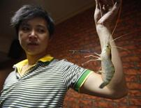<p>Owner Tsai Yao-cheng holds a shrimp at the Chuan Chia Le shrimp fishing restaurant in Taipei June 25, 2009. Picture taken June 25, 2009. REUTERS/Nicky Loh</p>