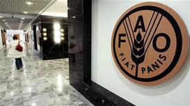 <p>La sede della Fao a Roma. REUTERS/Alessandro Bianchi</p>