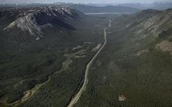 <p>The Alaska Highway is surrounded by boreal forest running north towards Whitehorse, Yukon in this file photo taken June 21, 2007. REUTERS/Andy Clark/Files</p>