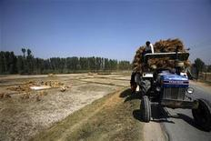 <p>Фермеры грузят сено в трактор в пригороде Сринагара, Индия 3 октября 2008 года. Индийский фермер с помощью молотка и зубила за 14 лет выдолбил в горе туннель, чтобы припарковать трактор напротив своего дома. REUTERS/Fayaz Kabli</p>
