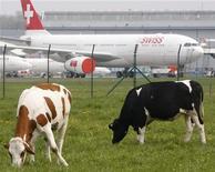 <p>Коровы пасуться на фоне самолета, стоящего на стоянке в аэропорту Цюриха 18 апреля 2010 года.Международное агентство воздушного транспорта (IATA) назвало неадекватной реакцию правительств европейских стран в ответ на распространение облаков вулканического пепла из-за извержения в Исландии. REUTERS/Christian Hartmann</p>