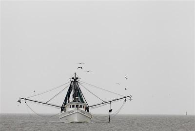 Gulf fishermen in peril