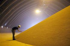 <p>Mill manager Josh Wheeler examines a pile of processed potash at the Mosaic Potash Colonsay mine storage facility in Colonsay, Saskatchewan in this file image from September 24, 2009. REUTERS/David Stobbe/Files</p>