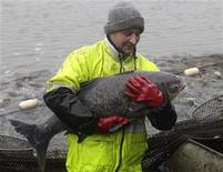 <p>Рыбак держит в руках старого карпа в Герасе, Австрия 4 ноября 2009 года. Английские рыбаки оплакивают зеркального карпа по кличке Двухцветный, веря, что он был самой большой пресноводной рыбой в Великобритании. REUTERS/Herwig Prammer</p>