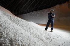 <p>PotashCorp mill general superintendent Trevor Berg holds a handful of chicklet potash at a potash holding centre at the Cory mine facilities near Saskatoon, August 19, 2010. REUTERS/David Stobbe</p>