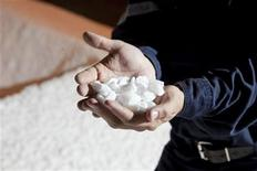 <p>Potash Corp mill general superintendent Trevor Berg holds a handful of chicklet potash inside the Cory mine facilities near Saskatoon August 19, 2010. REUTERS/David Stobbe</p>