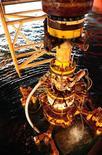 <p>Поврежденное противовыбросное оборудование нефтевышки Deepwater Horizon, Мексиканский залив 4 сентября 2010 года. Нефтяная компания BP Plc в понедельник продолжила бурение разгрузочной скважины, которая должна окончательно ликвидировать возможность утечки нефти из разрушенной скважины Macondo в Мексиканском заливе. REUTERS/Petty Officer 1st Class Thomas Blue/U.S. Coast Guard/ Handout</p>