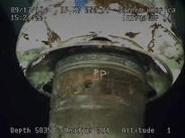 <p>Элемент герметизирующей конструкции, установленной для остановки утечки нефти в Мексиканском заливе, 17 сентября 2010 года. Нефтяная компания BP Plc окончательно загерметизировала поврежденную скважину Macondo в Мексиканском океане, залив ее цементом, сообщил представитель властей США. REUTERS/BP/Handout/File</p>