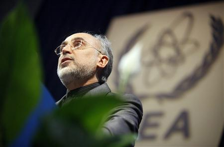 Chief of Iran's Atomic Energy Organization Ali-Akbar Salehi makes a speech during the 54th International Atomic Energy Agency (IAEA) General Conference at the UN headquarters in Vienna September 20, 2010. REUTERS/Herwig Prammer