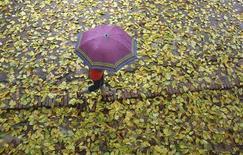 <p>Девочка идет под зонтом в индийском штате Уттар-Прадеш, 5 сентября 2010 года. Москву ждет дождливая неделя, а средняя дневная температура составит лишь плюс 5 градусов, ожидают синоптики. REUTERS/Parivartan Sharma</p>