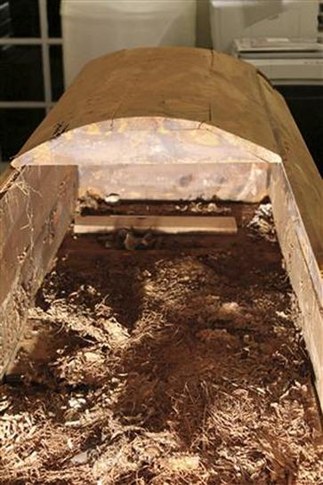 Lee Harvey Oswald's coffin auctioned for $87,000 - Reuters