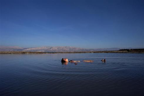 Life in the Dead Sea