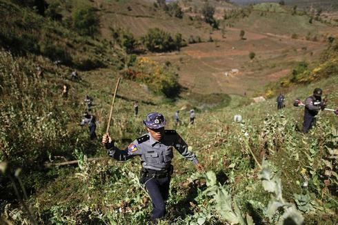 Myanmar's opium war