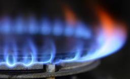 <p>Le juge des référés du Conseil d'Etat va rendre jeudi sa décision sur un recours des concurrents de GDF Suez qui contestent le plafonnement à 2% de la hausse des tarifs du gaz pour les particuliers survenue fin septembre. Si le Conseil d'Etat accède à leur demande, le gouvernement devrait être contraint d'annoncer une nouvelle hausse des tarifs. /Photo prise le 13 novembre 2012/REUTERS/Nigel Roddis</p>