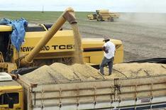 En la imagen un camión cargado con granos de soja en el municipio de Primavera do Leste, en Mato Grosso. La cosecha de trigo de Brasil para el 2014 que está siendo sembrada ahora rendiría 7,37 millones de toneladas, un 33 por ciento más que el año pasado, gracias a la siembra nuevos campos, dijo la agencia del Ministerio de Agricultura Conab, en un informe mensual difundido el martes. REUTERS/Paulo Whitaker