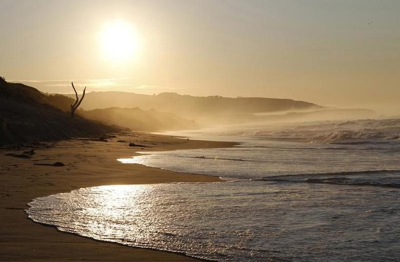 The sun rises over St. Clair beach in Dunedin September 5, 2011. REUTERS/Brandon Malone/Files
