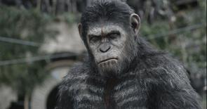 """Foto de publicidad del actor Andy Serkis en su rol de Caesar en """"El planeta de los simios"""", 30 de junio de 2014. """"Dawn of the Planet of the Apes"""", una secuela sobre simios muy inteligentes que luchan contra los humanos por establecer su dominio, derrotó a los gigantescos robots """"Transformers"""" en la taquilla de Estados Unidos y Canadá. REUTERS/Weta/20th Century Fox/Handout via Reuters"""