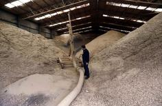 A worker stands next to a crushing machine in a warehouse at Tasmanian Alkaloids, a Johnson & Johnson subsidiary which processes around 80 percent of the world's thebaine poppies, the main ingredient in slow-release pain medication, located in Tasmania's northwest on the outskirts of Launceston June 4, 2014.   REUTERS/David Gray