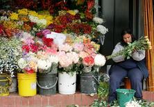 Imagen de archivo de una florería en Bogotá, feb 13 2005. El Banco Central de Colombia espera que la economía tenga un sólido crecimiento este año y el próximo por el sostenido consumo de los hogares y la mayor inversión, y estima que el impulso no comprometerá su meta de inflación. REUTERS/Eliana Aponte