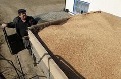 Un granjero revisa un cargamento de cebada en las cercanías deTrunovskoye, Rusia, mar 25 2014. Las prohibiciones de Moscú sobre numerosas importaciones de alimentos desde Estados Unidos y la Unión Europea no tendrán impacto en las exportaciones de granos de Rusia, dijo el jueves el ministro de Agricultura Nikolai Fyodorov.   REUTERS/Eduard Korniyenko