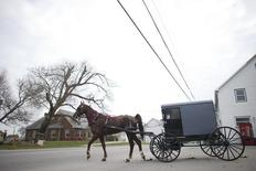An Amish horse and buggy travels on a road in Bart Township, Pennsylvania December 1, 2013.   REUTERS/Mark Makela