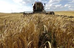 Комбайн убирает урожай в белорусском селе 20 июля 2014 года. Белоруссия собрала 9,2 миллиона тонн зерна, поставив абсолютный рекорд за все годы независимости, сказал на пресс-конференции заместитель министра сельского хозяйства Владимир Гракун. REUTERS/Vasily Fedosenko