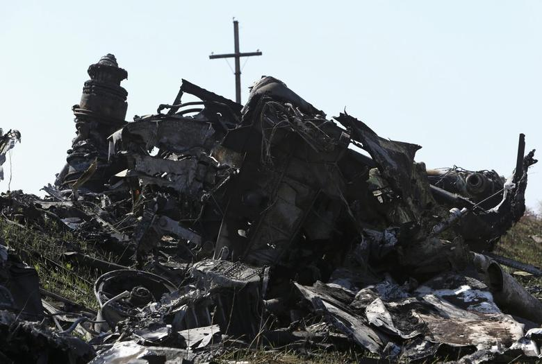 Parts of wreckage are seen at the site where the downed Malaysia Airlines flight MH17 crashed, near the village of Rozsypne (Rassypnoye) in Donetsk region, eastern Ukraine August 1, 2014. REUTERS/Sergei Karpukhin