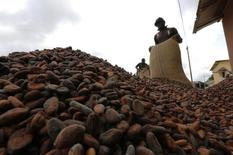 Men pour out cocoa beans to dry in Niable, at the border between Ivory Coast and Ghana, June 19, 2014.   REUTERS/Thierry Gouegnon