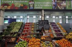 Una mujer en un stand de frutas y verduras dentro de un mercado argentino en Lomas de Zamora, cerca de Buenos Aires. Imagen de archivo, 22 abril, 2013.Empresas argentinas cerraron acuerdos comerciales con Rusia para exportarle productos por 750 millones de dólares, una cifra que podría escalar hasta los 1.800 millones de dólares el año que viene, dijo el miércoles el Ministerio de Industria del país austral.  REUTERS/Marcos Brindicci