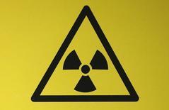 Знак радиации на АЭС в Англии 13 декабря 2012 года. Правительство Финляндии одобрило финско-российский атомный проект Fennovoima по строительству АЭС на севере страны, чем спровоцировало уход партии зеленых. REUTERS/Suzanne Plunkett