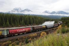 Rail cars loaded with canadian wheat travel through the Rocky Mountains on the Canadian Pacific railway line near Banff, Alberta, October 6, 2011.   REUTERS/Todd Korol