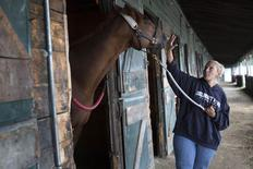 Trainer Lorita Lindemann pats Palmer's Approach, a race horse, in a stable at Suffolk Downs horse racing track in Boston, Massachusetts  October 2, 2014.  REUTERS/Brian Snyder