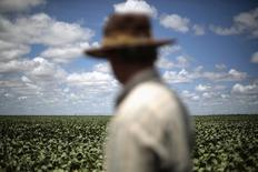 Un agricultor observa su cultivo de soja en Barreiras. Imagen de archivo, 06 febrero, 2014. La estatal Compañía Nacional de Abastecimiento (Conab) de Brasil pronosticó el martes una cosecha de soja de entre 89,3 millones de toneladas y 91,7 millones de toneladas en la temporada 2014/2015, reduciendo el rango de entre 88,8 millones de toneladas y 92,4 millones de toneladas del mes pasado. REUTERS/Ueslei Marcelino