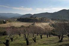 A view of the Kasta hill where the site of an archaeological excavation is located, at the town of Amphipolis, in northern Greece November 22, 2014.    REUTERS/Alexandros Avramidis