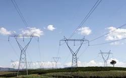 Torres de transmissão de eletricidade numa fazenda de café em Santo Antônio do Jardim. 06/02/2014 REUTERS/Paulo Whitaker