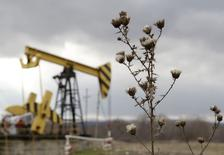 Нефтяной станок-качалка компании Роснефть в Краснодарском крае 21 декабря 2014 года. Добыча нефти и зависящие от неё доходы российской казны страдают от санкций Запада против РФ и двукратного снижения мировых цен на углеводороды, однако при цене на нефть выше $30 за баррель российские нефтекомпании, возможно, переживут 2015-й без убытков, считают аналитики. REUTERS/Eduard Korniyenko