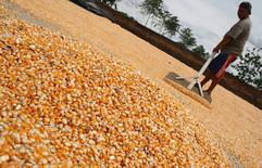 En esta imagen de archivo, un agricultor utiliza una pala para esparcir maíz para secar en la localidad indonesia de Ngasem, en Kediri, el 12 de diciembre de 2014. Los precios mundiales de los alimentos cayeron en marzo a su nivel más bajo en casi cinco años, a medida que el suministro de materias primas, como cereales y carne, se mantuvo sólido, dijo el jueves la Organización de Naciones Unidas para la Agricultura y la Alimentación (FAO). REUTERS/Antara Foto/Rudi Mulya