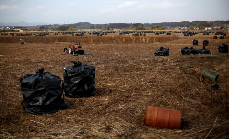 Big black plastic bags containing radiated soil, leaves and debris from the decontamination operation are seen at an area devastated by the March 11, 2011 earthquake and tsunami in Namie town, Fukushima prefecture, near Tokyo Electric Power Co's (TEPCO) tsunami-crippled Fukushima Daiichi nuclear power plant February 24, 2015.  Many residents of Okuma, a village near the stricken Fukushima Daiichi plant, are angry about government plans to dump some 30 million tons of radioactive debris raked up after the March 2011 nuclear disaster in a sprawling waste complex on their doorstep. Few believe Tokyo's assurances that the site will be cleaned up and shut down after 30 years. In the four years since the disaster, Japan has allocated over $15 billion to lower radiation levels around the plant. Every day, teams of workers blast roads with water, scrub down houses, cut branches and scrape contaminated soil off farmland. That radiated trash now sits in plastic sacks across the region, piling up in abandoned rice paddies, parking lots and even residents' backyards.  REUTERS/Toru Hanai (JAPAN - Tags: DISASTER ENERGY ENVIRONMENT)PICTURE 10 OF 27 FOR WIDER IMAGE STORY 'RADIOACTIVE FUKUSHIMA - FOUR YEARS ON'SEARCH 'OKUMA TORU' FOR ALL IMAGES