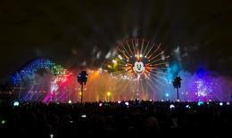"People watch ""World of Color - Celebrate! The Wonderful World of Walt Disney"" during Disneyland Diamond Celebration in Anaheim, California May 22, 2015. REUTERS/Mario Anzuoni"