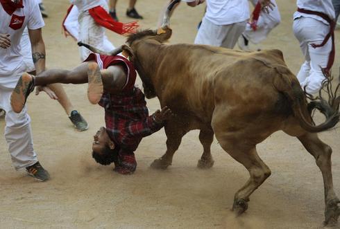 The bull's revenge