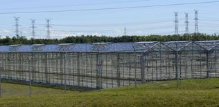 A 7-acre greenhouse facility run by Supreme Pharmaceuticals, formerly a copper exploration company, is seen as it prepares to become a medical marijuana producer in Tiverton, Ontario August 5, 2015.   REUTERS/Euan Rocha