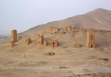 A view shows tower tombs in the Valley of Tombs, west of the historical city of Palmyra, Syria, August 4, 2010. Satellite images have confirmed the destruction of the Temple of Bel, which was one of the best preserved Roman-era sites in the Syrian city of Palmyra, a United Nations agency said, after activists said the hardline Islamic State group had targeted it. The Syrian Observatory for Human Rights monitoring group and other activists said on August 30, 2015 that Islamic State had destroyed part of the more than 2,000-year-old temple, one of Palmyra's most important monuments.Picture taken August 4, 2010.  REUTERS/Sandra Auger    REUTERS/Sandra Auger