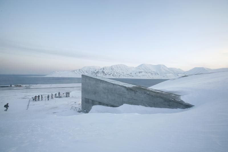 Syrian War Spurs First Withdrawal From Doomsday Arctic Seed Vault
