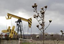 Una unidad de bombeo de petróleo de la compañía Rosneft, en la región de Krasnodar, Rusia, 21 de diciembre de 2014. La producción de petróleo de Rusia podría empezar a declinar en el 2017 si un severo régimen fiscal continúa, dijo el ministro de Energía ruso, Alexander Novak, en una entrevista con el diario Kommersant publicada el martes. REUTERS/Eduard Korniyenko