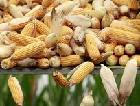 Сбор кукурузы в Китае. Ведущая санкционную войну со странами ЕС и США Россия ввела новый запрет - на  импорт из США кукурузы и сои с 15 февраля, что может привести к некоторому подорожанию соевых бобов. REUTERS/Kim Kyung-Hoon