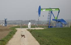 Станок-качалка компании OMV на нефтяном месторождении в Австрии. 8 апреля 2014 года. Австрийская нефтегазовая компания OMV надеется увеличить добычу до 2020 года за счет месторождений в России и других странах с низкой себестоимостью добычи, сказал генеральный директор Райнер Зеле. REUTERS/Leonhard Foeger
