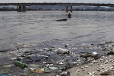 Peixes mortos na Baía de Guanabara no Rio de Janeiro.  13/1/2016.  REUTERS/Ricardo Moraes