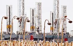 Буровые установки в Дикинсоне. Северная Дакота. США 21 января 2016 года. Ведущие производители сланцевой нефти в США говорят, что готовы повышать добычу, когда черное золото подорожает до $40, напоминая рынку, что спад производства может оказаться не таким длительным, как ожидалось. REUTERS/Andrew Cullen